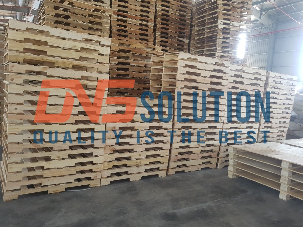 kho pallet gỗ dns solution